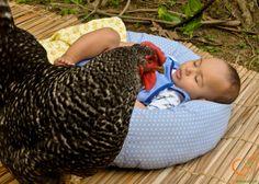 a galinha pintadinha e o bebê #tale for #babies / história p/ #crianças #bebê #criança #children #EducaçãoAmbiental #EnvironmentalEducation