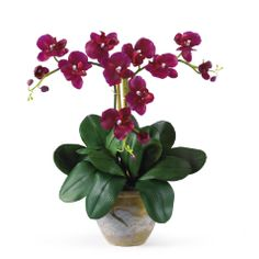 Triple Mini Phalenopsis Silk Orchid Arrangement Wine