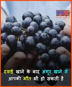 Pin by bipin raj on स्वास्थ Wierd Facts, Intresting Facts, Real Facts, Food Facts, General Knowledge Book, Gernal Knowledge, Knowledge Quotes, Amazing Facts For Students, Psychology Fun Facts