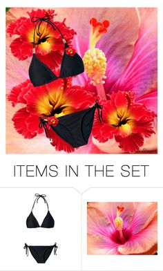 """""""TS-Flowers and Bikini"""" by deborah-strozier ❤ liked on Polyvore featuring art and modern"""