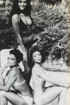 Vintage photo of Jayne Kennedy, Freda Payne and Eartha Kitt (Cover of Jet Magazine) Veronica Lake, Shirley Jones, Vintage Black Glamour, Vintage Beauty, Vintage Soul, Retro Vintage, Freda Payne, Divas, Merle Oberon
