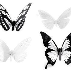 Motýlí dekorace