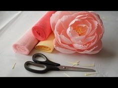 Crepe paper peonies by PaperMintHow To Make David Austin Rose From Crepe Paper - Craft TutorialYou Won't Want To Miss How Easily She Makes These Beautiful Peonies! Giant Paper Flowers, Diy Flowers, Fabric Flowers, Peony Flower, Flower Diy, Wedding Flowers, Crepe Paper Crafts, Diy Paper, Fleurs Diy