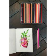 """""""Working hard for something you don't care about is stress. Working hard for something that you love is passion."""" -unknown . . . . #passionfruit #fruit #exotic #nature #summer #tropical #dragonfruit #sketchbook #paper #illustration #livelovearts #minisketch #study #prismacolor #livelovearts #pencil #artist #nawden #nationalart #anaba3ref #graphic #design #realism #realistic #nace #middleeast #beirut #lebaneseartist"""