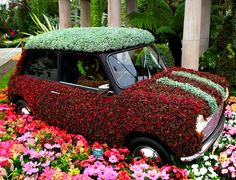 Chelsea Flower Show Mini Cooper