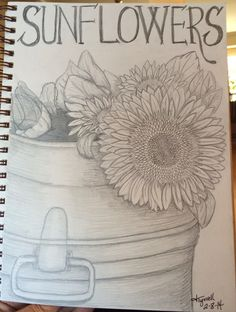 Sunflowers in pencil Daily Doodle 2-8-14 By Jeanne Tyrrell