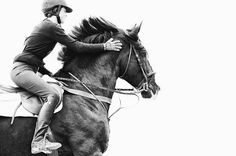 www.pegasebuzz.com | Equestrian photography : Ryan Courson.