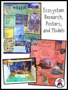 Love this project! Animals and Ecosystems Zoo Project!