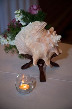 Fresh flowers inside a real seashell make a great centerpiece for a beach theme party or wedding. It's also a great alternative to high centerpieces, which makes it hard for guests to talk across the table with other guests. With a smaller, fresher centerpiece, your guest feels more comfortable to glance all around. See a sample wedding checklist: http://www.sailorgirlfriend.com/planning-a-wedding.php