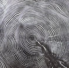 Through relief printing and a laborious rubbing technique Bryan created the print Hemlock At the grand size of long x wide the actual diameter, texture and pattern of this tree section is gorgeously translated onto paper. Ink is rolled out a… Patterns In Nature, Cool Patterns, Textures Patterns, Maleficarum, My Fantasy World, Printmaking, Art Photography, Horror, Abstract
