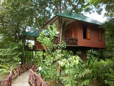 Khao Sok National Park (Surat Thani, Thailand): Top Tips Before You Go…