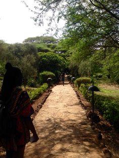 Saturday Social, Amboseli Lodge.