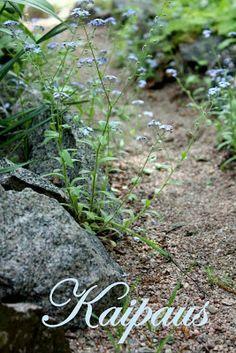 RunoTalo: Hiljaisuuden voimakortit