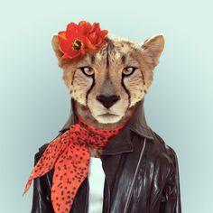 """""""Zoo Portraits"""" es una divertida serie del español Yago Partal en donde hace retratos de animales vestidos de humanos con mucha personalidad."""