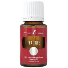 Tea Tree (Melaleuca Alternifolia)   http://yl.pe/3jsz to purchase Young Living either at Retail or Wholesale through my member number. Feel free to message me with any questions!