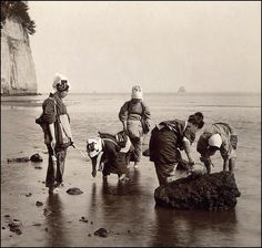 Shell-Pickers off Honmoku Misaki - Yokohama --By T. ENAMI, ca. 1898-1903  (click for detailed description!)
