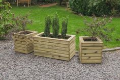 These contemporary style Linear Planters are the perfect size for a variety of different plants such as miniature firs, box, standards, or flowering shrubs such as azaleas or roses. Wooden Garden Planters, Tall Planters, Square Planters, Patio Planters, Exterior Wood Stain, Contemporary Planters, Contemporary Style, Pressure Treated Timber, Forest Garden