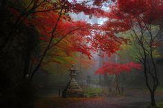 比叡山延暦寺(横川) : 京都写真(Kyoto Photo)