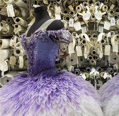 Lilac fairy tutu by Australian Ballet