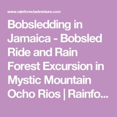 Bobsledding in Jamaica - Bobsled Ride and Rain Forest Excursion in Mystic Mountain Ocho Rios | Rainforest Adventures