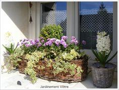 entree maison pots de fleurs id es deco maison. Black Bedroom Furniture Sets. Home Design Ideas