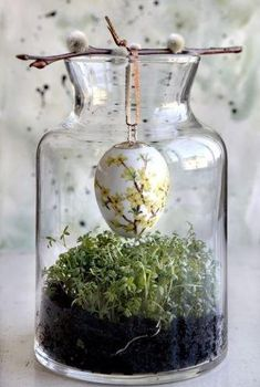 Crafty finds for your inspiration! No. 2 | Just Imagine - Daily Dose of Creativity. Egg pussy wllkow plant terrarium