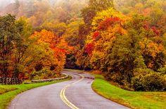 autumn drive on blue ridge parkway - Alex Grichenko Photography