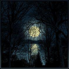 Beautiful Moon http://25.media.tumblr.com/tumblr_lme0dmH3N71qz6f9yo1_500.jpg