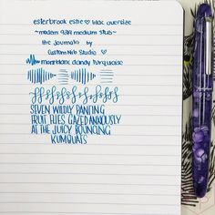 Esterbrook The Journaler Nib A Great Writer for Handwriting and Journaling 2 - Azizah Asgarali