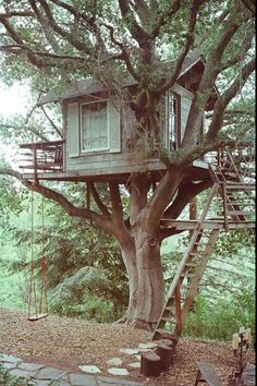 I have always wanted an epic treehouse