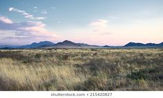 Find karoo south africa stock images in HD and millions of other royalty-free stock photos, illustrations and vectors in the Shutterstock collection. Thousands of new, high-quality pictures added every day. Royalty Free Images, Royalty Free Stock Photos, Sunset Art, South Africa, Landscapes, Illustration, Pictures, Travel, Scenery