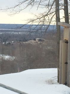The view from Birch Hickory Hills, Birch, Outdoor, Outdoors, Outdoor Living, Garden