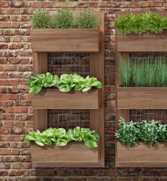10 Easy Indoor Herb Garden Ideas You Should Try Simple Vertical Herb Garden Small Backyard Gardens, Indoor Garden, Outdoor Gardens, Home And Garden, Outdoor Sheds, Modern Backyard, Easy Garden, Garden Tips, Vertical Herb Gardens