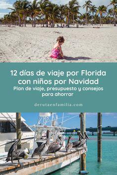 Resumimos la ruta final, aportamos algunos consejos para ahorrar y desglosamos el presupuesto 12 días de viaje por Florida con niños por nuestra cuenta Palm Beach, Key West, Florida, Travel Plan, Saving Tips, National Parks, Paths, Key West Florida