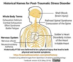 Historical names for Post-Traumatic Stress Disorder that refer to parts of the body. PTSD was assumed to be a physical injury causing both physical & mental problems. Old names include nervous shock, shell shock, railroad spinal syndrome, concussion of the spine, soldier's heart, irritable heart, disorderly action of the heart, effort syndrome, battle fatigue, neurocirculatory asthenia. PTSD's physical effects include sweating, shaking, racing pulse, rapid breathing, especially when…