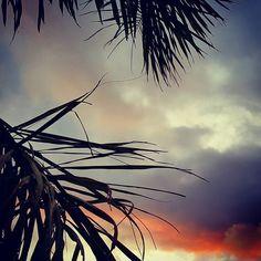St Leonards Sunset  #stleonards #bellarinepeninsula #sunset #sunsets #sunset_madness #sunsetlovers #sunsetporn #sunrise_sunsets_aroundworld #beautifuldestinations #outdoors #nature #naturelovers #nature_perfection #natureza #nature_sultans #naturelover #naturehippys #photographer #photooftheday #wanderlust #travel #traveling #travelgram #travelling #travelingram #weekendgetaway #landscape #landscape_lovers #landscapes #landscape_captures by beegb5 http://ift.tt/1JO3Y6G