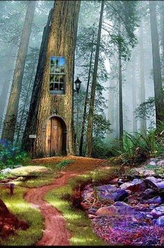Architecture - Tree House - The Enchanted Wood Cool Tree Houses, Fairy Houses, Play Houses, Enchanted Wood, Photo On Wood, In The Tree, Green Man, Beautiful Places, Scenery