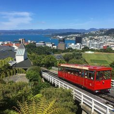 Exploring the museums & parks of Wellington, New Zealand - Everybody Hates A Tourist