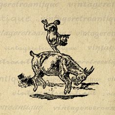 Dog Balancing on the Back of a Goat Printable Digital Graphic Circus Animals Image Download Vintage Clip Art. Vintage high resolution digital image for printing, iron on transfers, and other great uses. This digital graphic is high quality, high resolution at 8½ x 11 inches. Transparent background PNG version included.