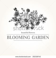 Vector card with a isolated bouquet of garden flowers.  Graphics. Black and white illustration.