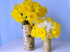 crafty little gnome: How to Make Tree Bark Vases