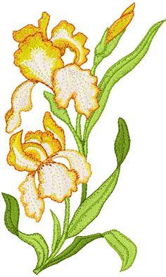 Орхидеи машинная вышивка дизайн
