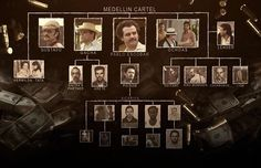 Het Medellínkartel was een groot opgezet Colombiaans drugskartel, opgericht en geleid door Pablo Escobar en vernoemd naar zijn geboorteplaats Medellín.