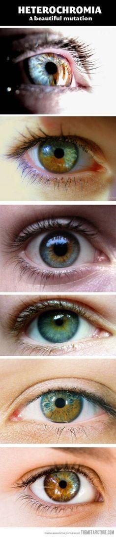 Most beautiful mutation…