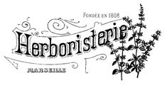 French Herbal Shop Transfer // The Graphics Fairy. she has also included a reversed option French Images, Images Vintage, French Typography, Vintage Typography, Graphics Fairy, Free Graphics, Diy Image, Herbal Shop, Image Deco