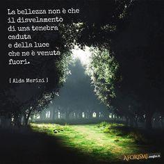 La bellezza non è che il disvelamento di una tenebra caduta e della luce che ne è venuta fuori.