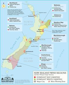 Marlborough is one of the ten major wine regions in New Zealand. Home to more than 100 wineries supplied by local growers, Marlborough is known for its Sauvignon Blanc and Pinot Noir wines. In fact, of New Zealand Sauvignon Blanc comes from Marlborough. Map Of New Zealand, New Zealand Wine, New Zealand Food, New Zealand Travel, Boot Camp, Wine Tasting Events, Wine Education, Buy Wine Online, Vintage Wine