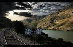 Vesúvio - Duoro valley - Portugal