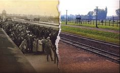 Euro nazi maniak and her US dollar's friends. Auschwitz then and now