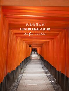 Can you have a favourite temple/shrine? This is mine: Fushimi-Inari. Stunning.